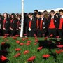 AGS REMEMBERS STUDENTS LOOKING AT POPPIES